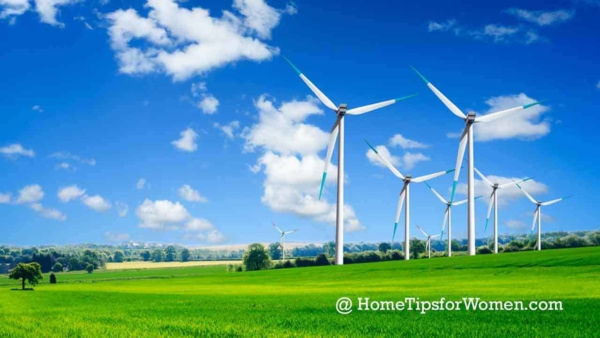 sustainable resources help us build green houses that have less impact on the environment