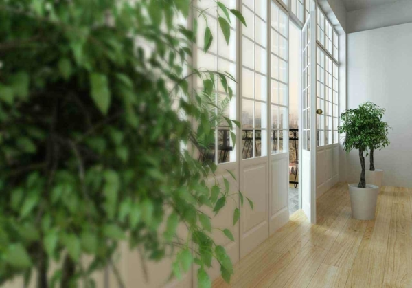 plants are often included with tips on improving indoor air quality, but they're not very effective at this unless you have a huge number of plants