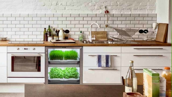 the urban cultivator offers you an exciting new way to grow your own food indoors
