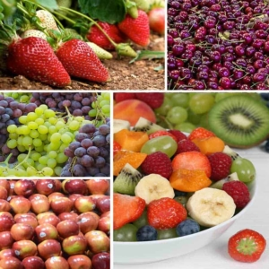 eating healthy means buying the best fruit & washing it carefully