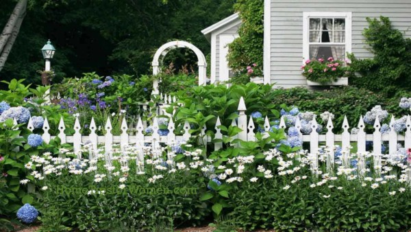 @landscaping-house-fence-white-picket-flowers-flower-boxes-ht4w1280