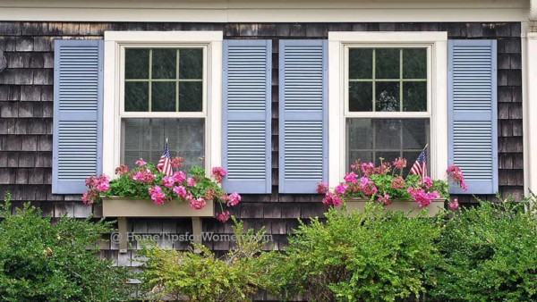 #gardening-window-boxes-flowers-pink-shutters-blue-ht4w1280